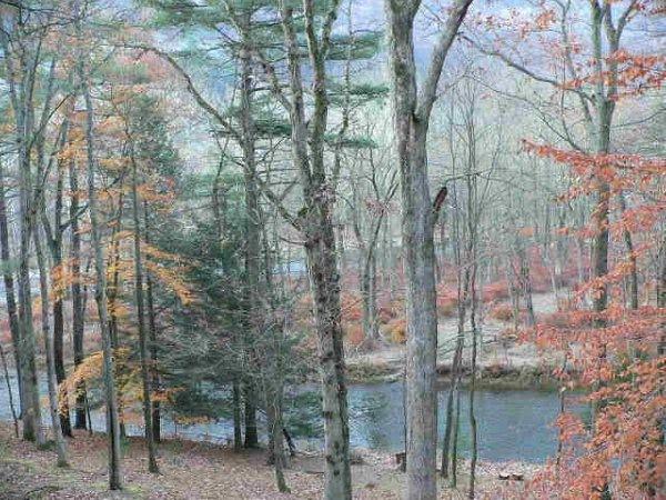 2-Downstream-Deck-View-in-Autumn