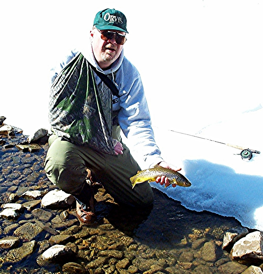 Trout feed in winter