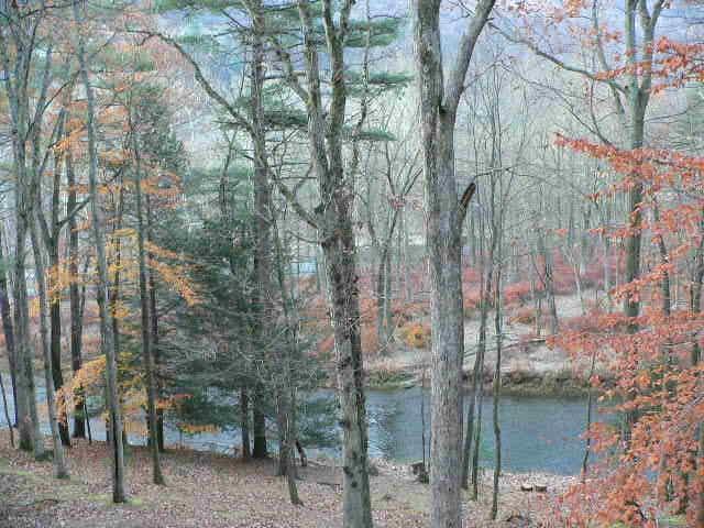 Downstream in Autumn